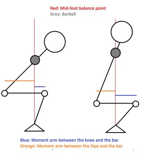 Notice that the low bar squat trades a shorter lever arm at the knee for a longer one at the hips.